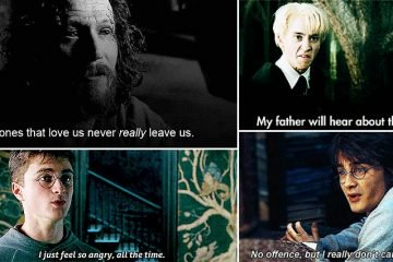 Harry Potter Quotes Even Muggles Use In Everyday Life