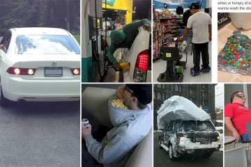 Lethargic People Who Have Turned Laziness Into An Art Form