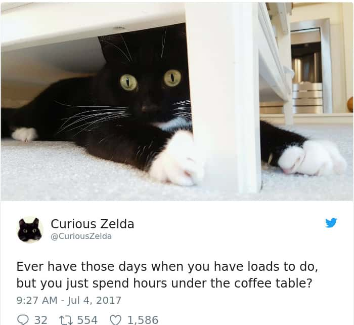 Tweets By Curious Zelda coffee table