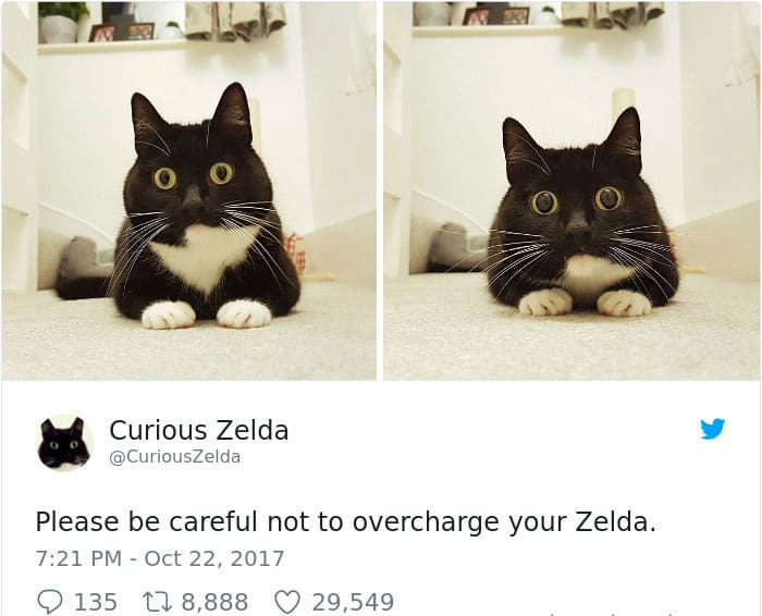 Tweets By Curious Zelda overcharge