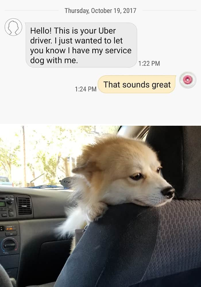 Uber Drivers Surprised Their Customers service dog