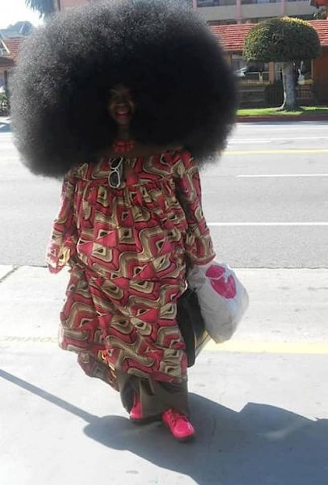 funny-crazy-hairstyles huge afro