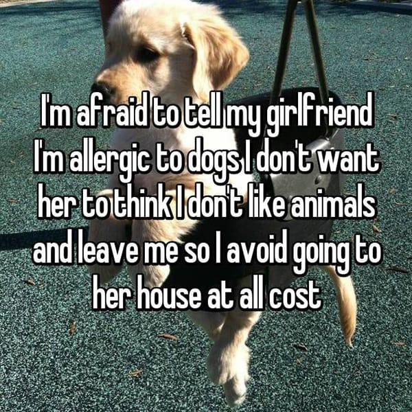 Annoying Allergies Relationships dogs