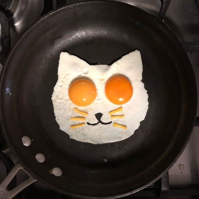 Breakfast Eggs Into Works Of Art cat