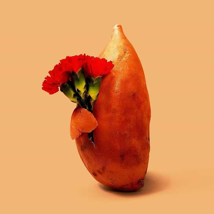 Mind Boggling Images unexpected objects sweet potato