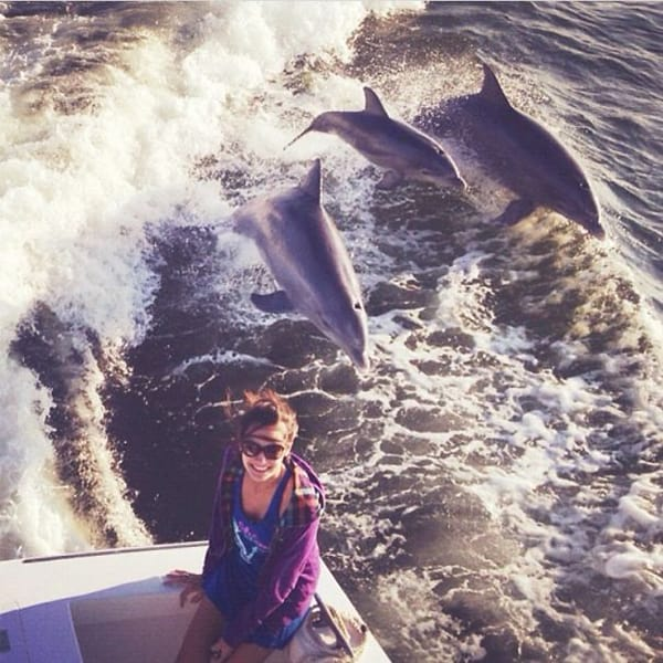 Pics Or It Didn't Happen dolphins