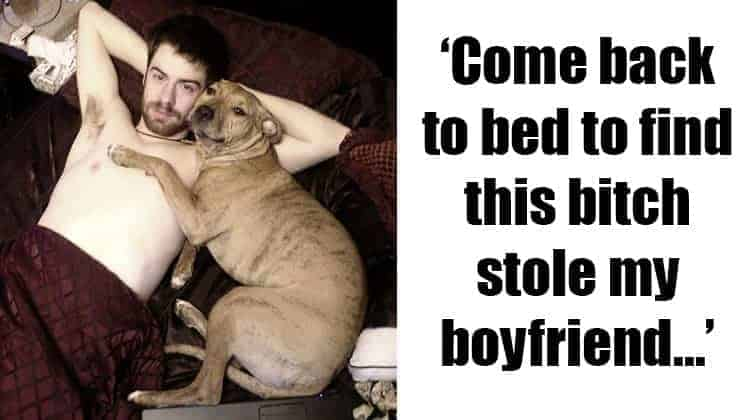 Shameless Pets Stole Partners
