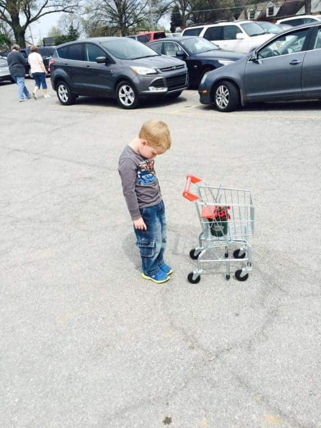 The Joys Of Shopping With Kids small trolley