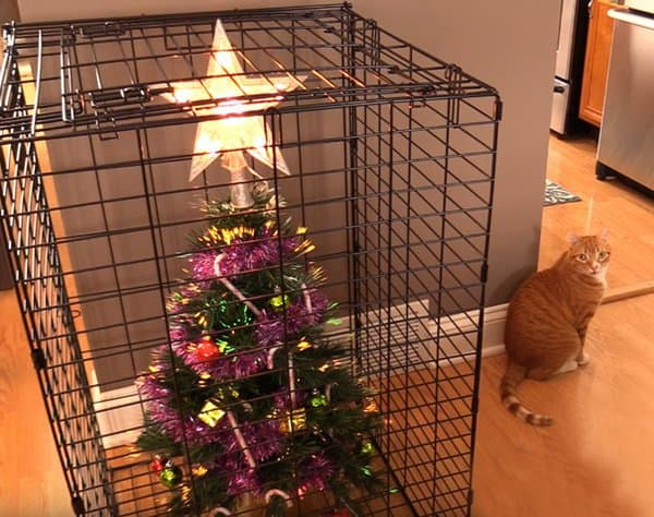 christmas-tree-inside-a-cage
