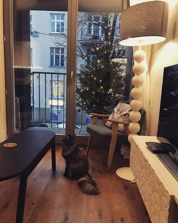 christmas-tree-outside-the-house