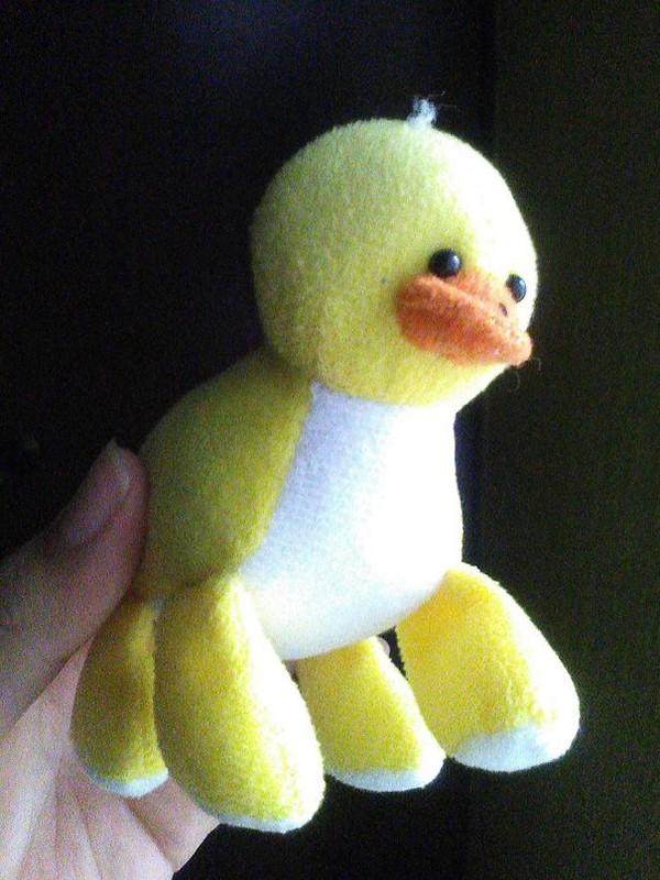 Epic Toy Design Fails four legged duck