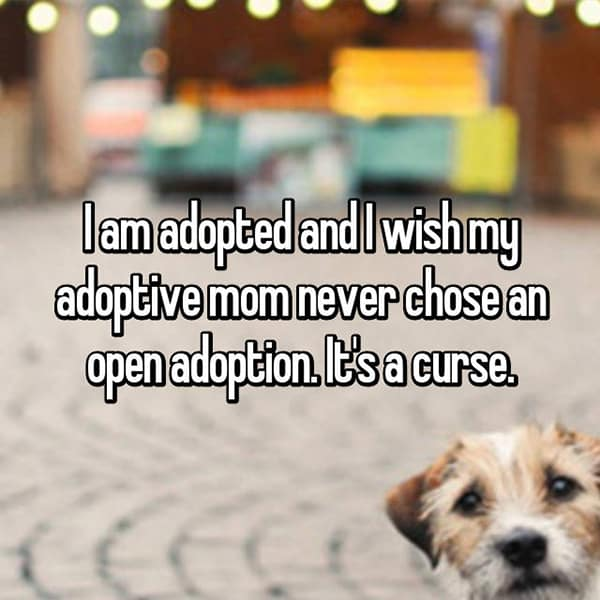 Experiences With Open Adoption curse