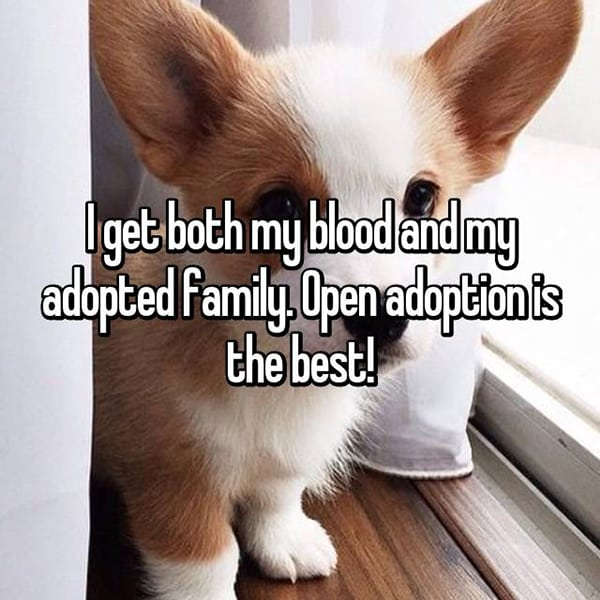 Experiences With Open Adoption is the best