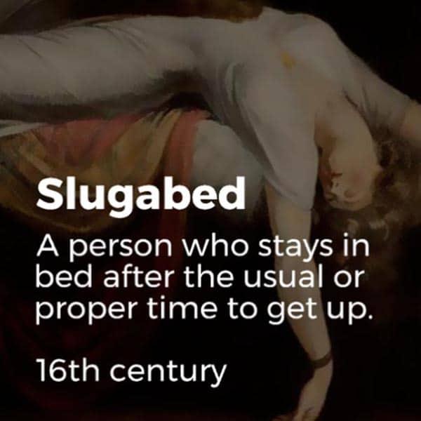 Forgotten English Words slugabed