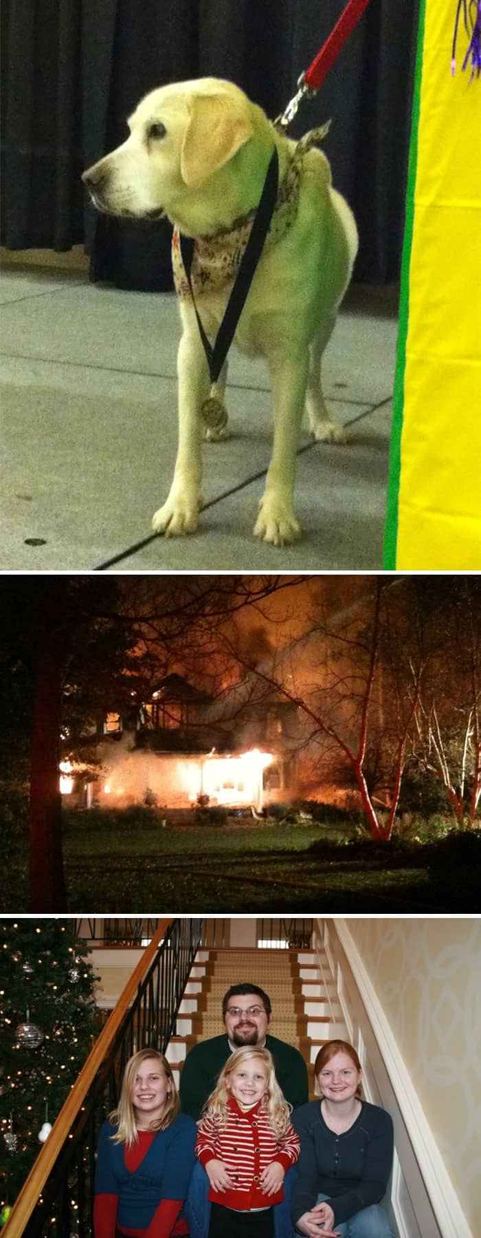 Heroic Dogs molly fire
