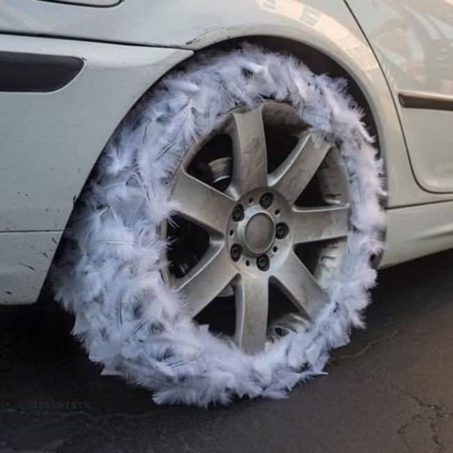 Images That Will Make You Feel Uncomfortable feather wheel