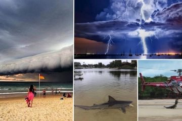 Photos That Will Make You Totally Respect The Bravery Of The Residents Of Australia