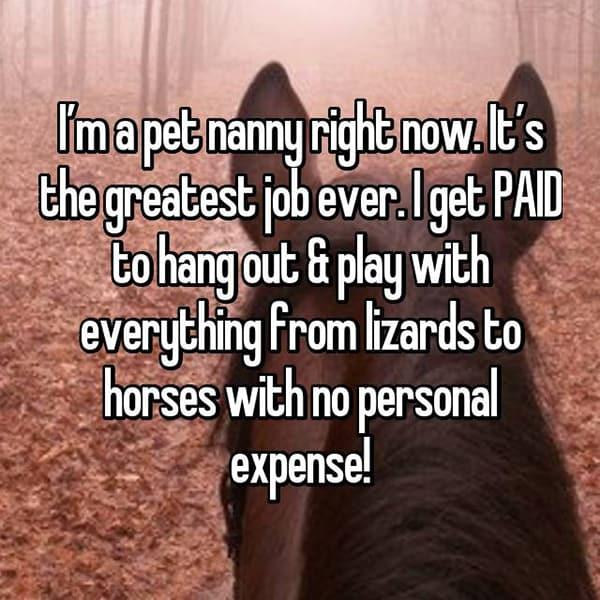 The Best Jobs pet nanny