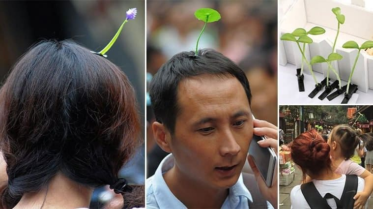 These Sprouting Hairpins Are The Latest Chinese Fashion Craze