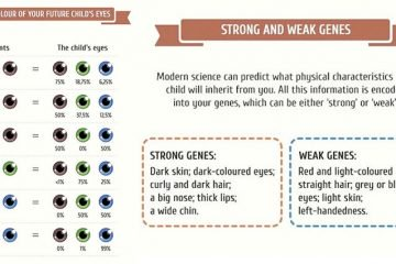 This Awesome Guide Will Tell You What Your Future Children Are Likely To Look Like