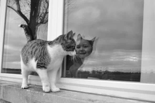 cat-girl-window