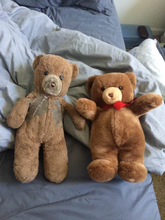 identical-bears