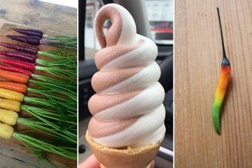 oddly-satisfying-food-photos