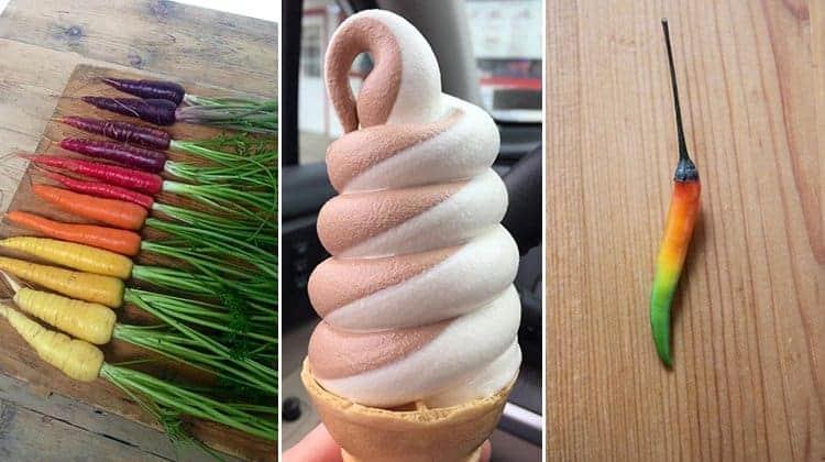 oddly-satisfying-food-photos