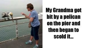 times-grandparents-made-life-more-interesting
