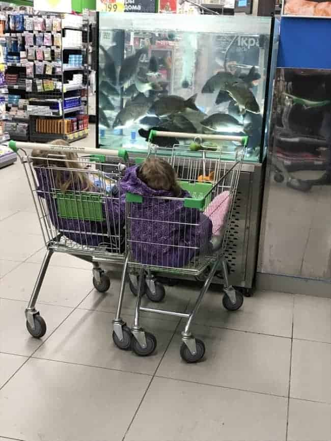 watching-fish-at-supermarket