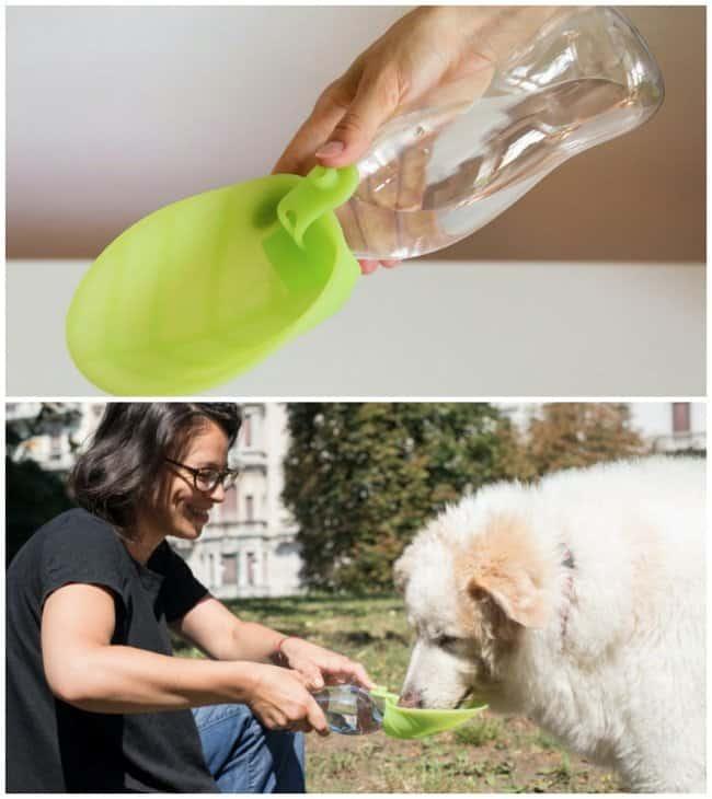 Portable-water-dispenser