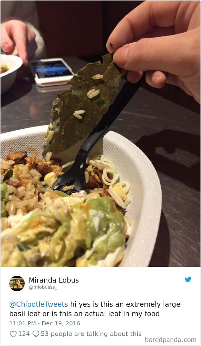 actual-leaf-on-chipotle