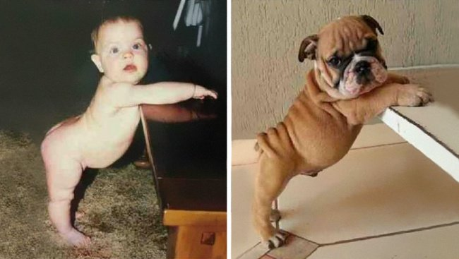 baby_and_dog_similar_pose