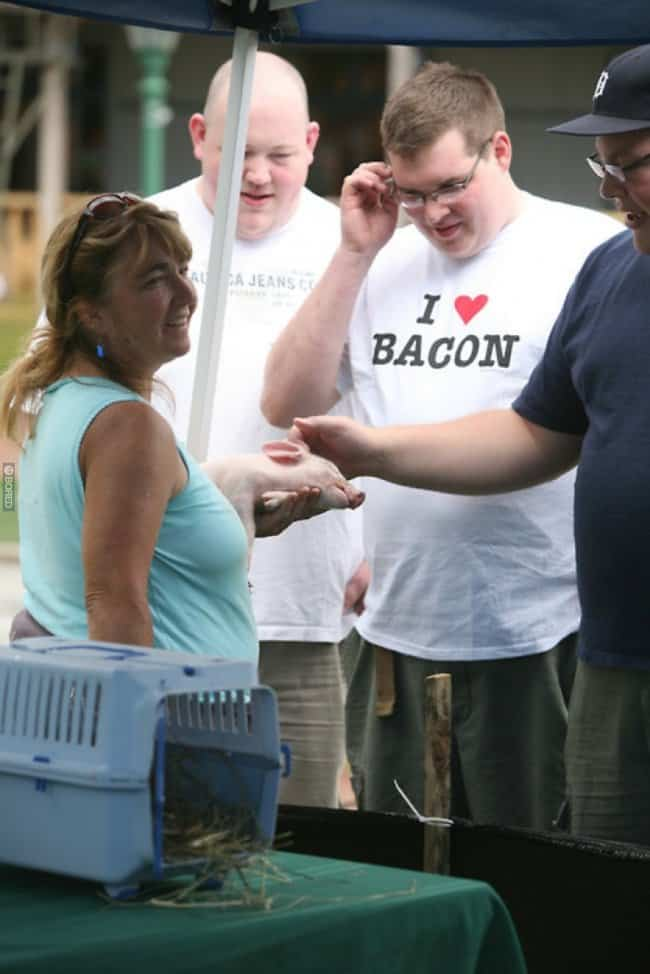 bacon-shirt-while-looking-at-pig-perfect-t-shirt-perfect-time