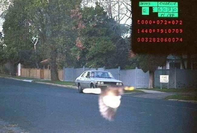 bird-concealed-speeding-cars-registration-plate-on-the-police-camera