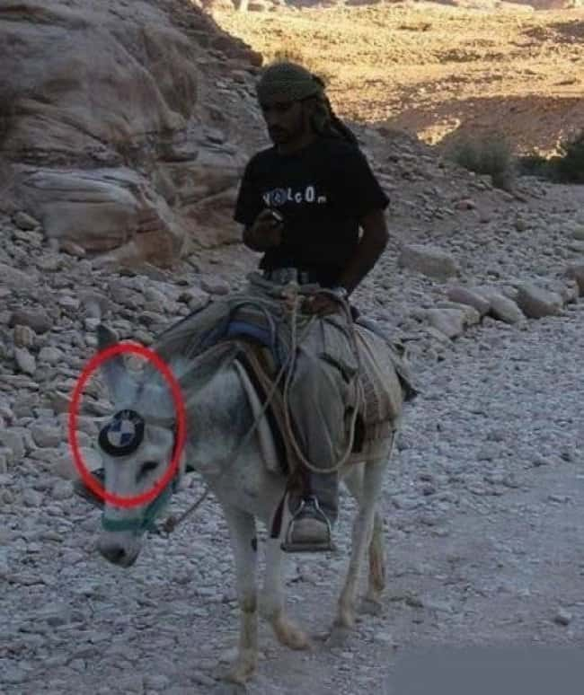 bmw-logo-donkey-blatant-lies-fool-others