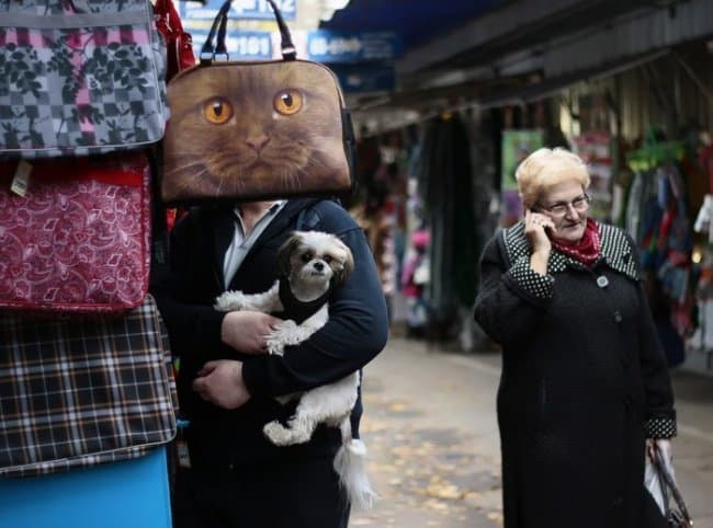 cat-bag-on-the-man-head-tricky-pictures