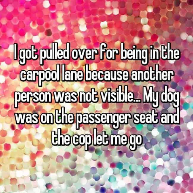 dog-on-the-passenger-seat