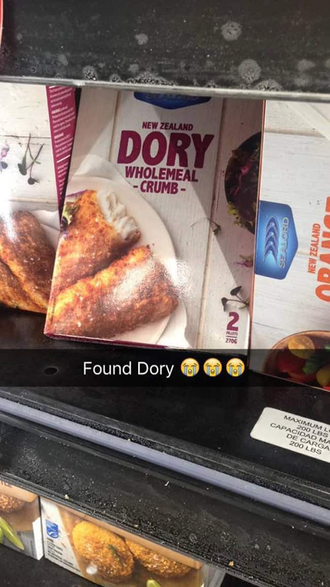 dory_found_at_last