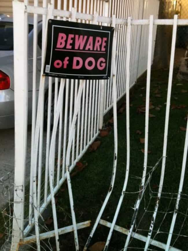 fence_broken_beware_of_the_dog