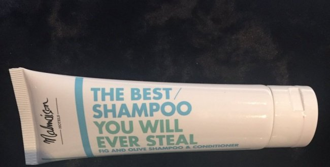 hilarious-honest-shampoo