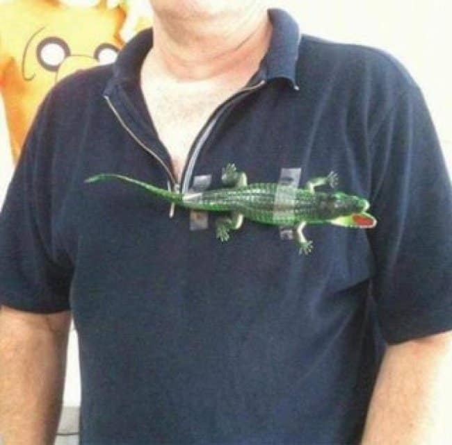 lacoste-crocodile-logo-shirt-blatant-lies-fool-others