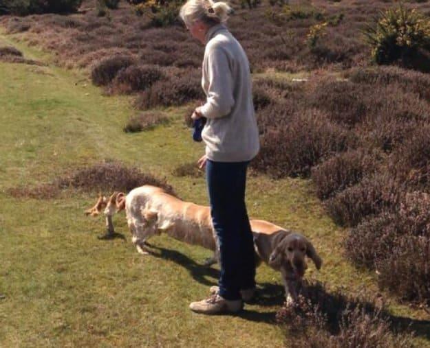 long-dog