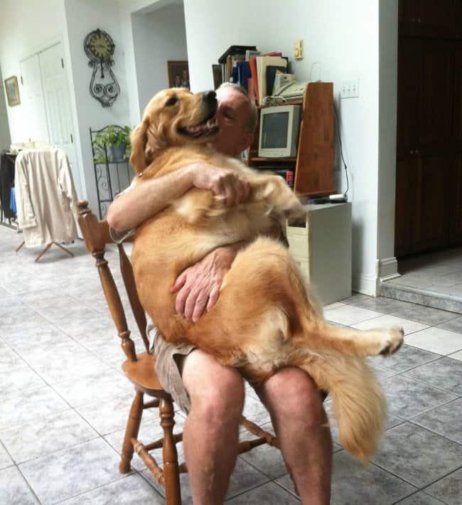 old-man-hugging-a-dog
