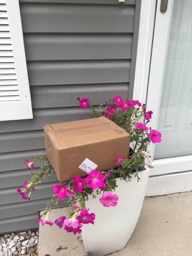 package_placed_on_a_plant
