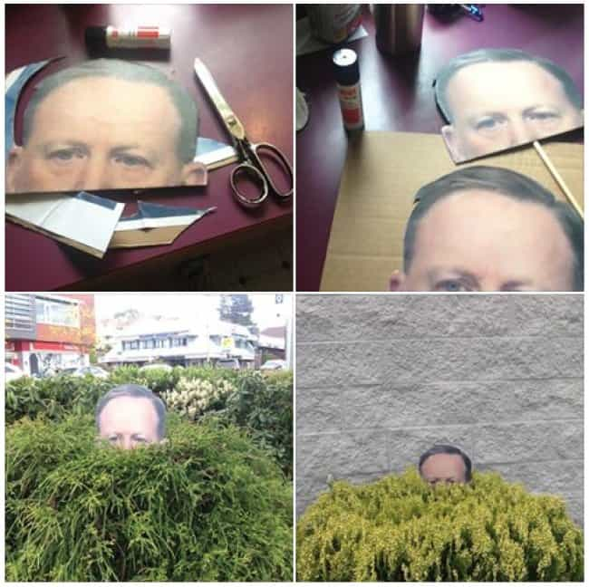 spy-hiding-in-the-bush-weird-ideas