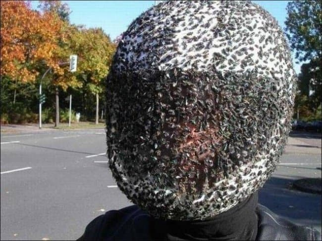 swarm_of_bees_on_helmet