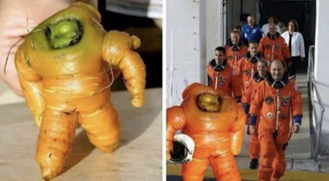 astronaut-carrot-how-whimsical-people-see-things
