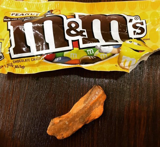 bizarre-piece-found-in-choclate-candy-pack-unbelievable-photos