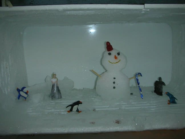 building-snowman-in-the-freezer-roommate-pranks